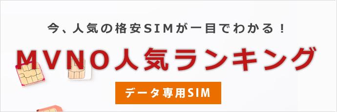 データ専用SIMランキング