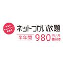 DTI SIM ネットつかい放題 半年間980円割引キャンペーン