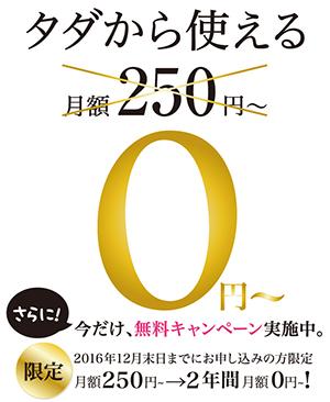 スマート250プランの無料キャンペーン