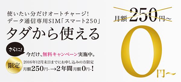 スマモバの「スマート250プラン」