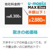 大容量の25GBプランが速度制限なし