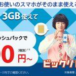 BIGLOBEモバイルのキャッシュバックキャンペーン